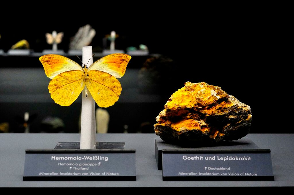 Goethite, Lepidokrokite and Butterfly.