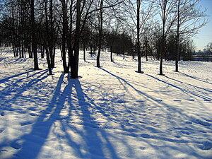 Снег и тени