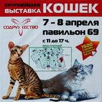 Содружество 7 - 8 апреля 2012 г.