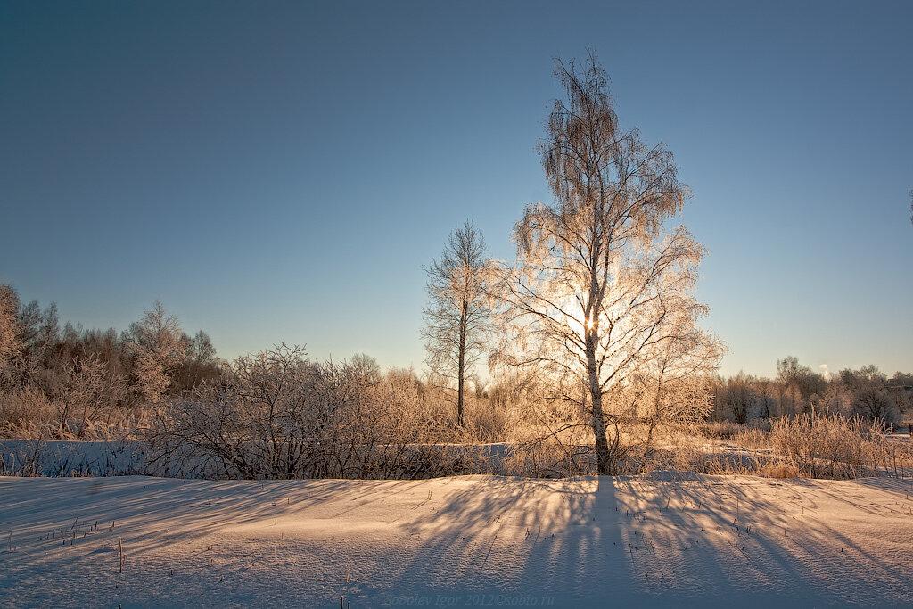 Зимний свет