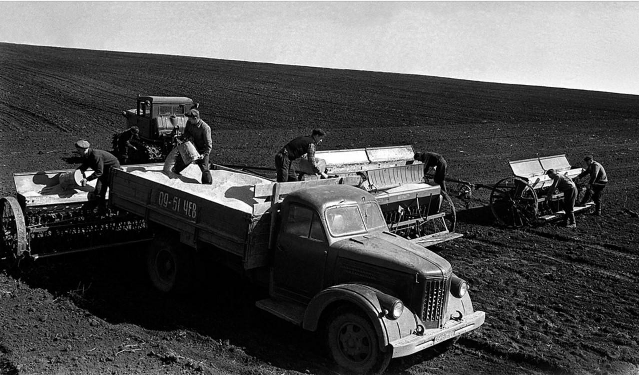 Сев зерновых культур