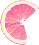 RR_PinkLemonade_Element (65).png