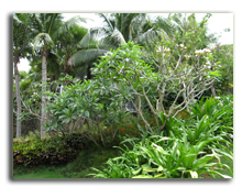 Mandarin Oriental Sanya 5*