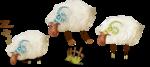 NLD Sheeps sh (2).png
