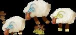 NLD Sheeps.png
