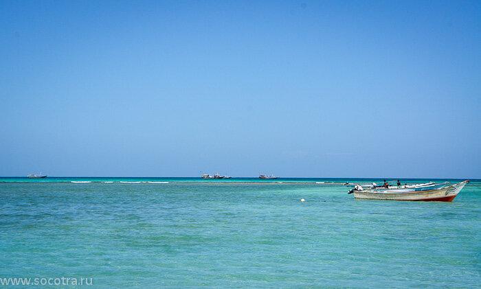 остров Сокотра в Индийском океане