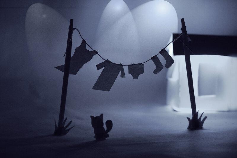 Ночной дозор - коты не спят