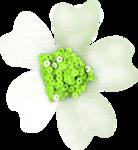 зеленая мечта