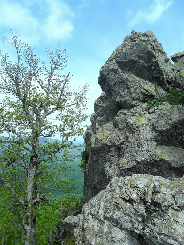 У скалы ... SAM_6741.JPG