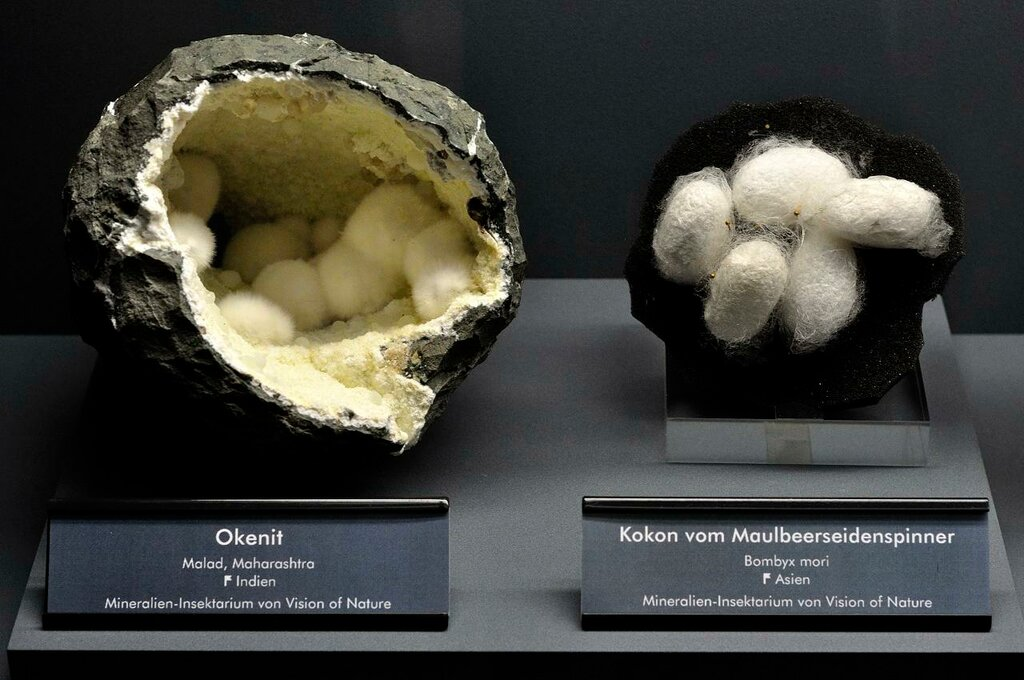 Okenite and silkworm cocoon.