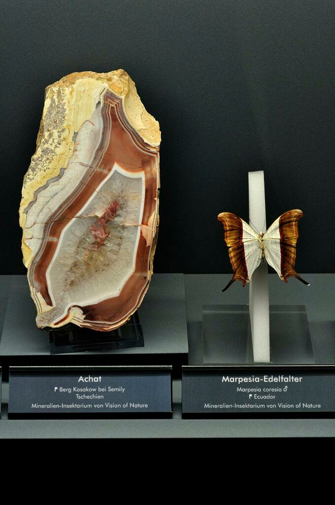 Agate and Butterfly.