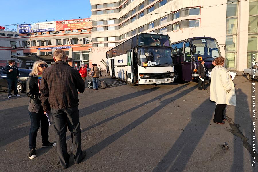 на этих автобусах мы поедем в порт Нижнего Новгорода