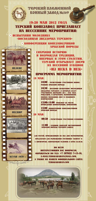 Весенний аукцион на Терском конном заводе