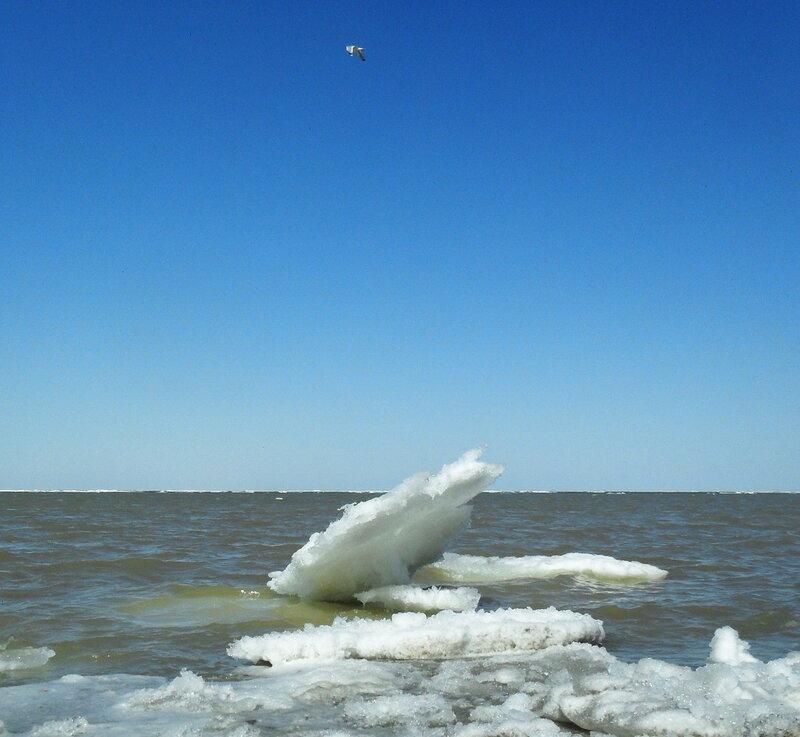 Мартовское движение льдов