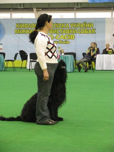http://img-fotki.yandex.ru/get/6109/108767059.4/0_6f221_65fdf73e_L.jpg