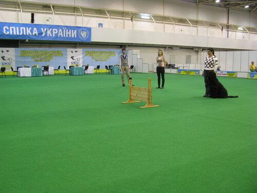 http://img-fotki.yandex.ru/get/6109/108767059.4/0_6f225_9871cc96_L.jpg