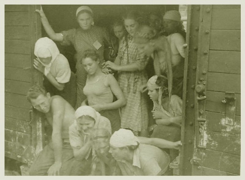 Голые во время войны фото