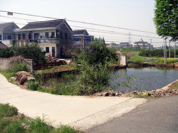 Рыбные озера в Китае