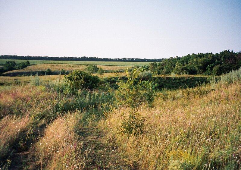 Степь и поля, Белокалитвенский район Ростовской области