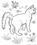 cats_coloring_pages_301.gif