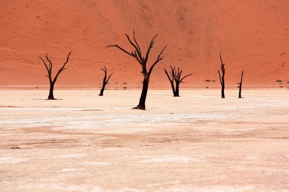 Мертвая долина — это не совсем