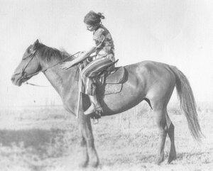 на лошадке