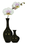 vase_10_bycrealineavril2012.png