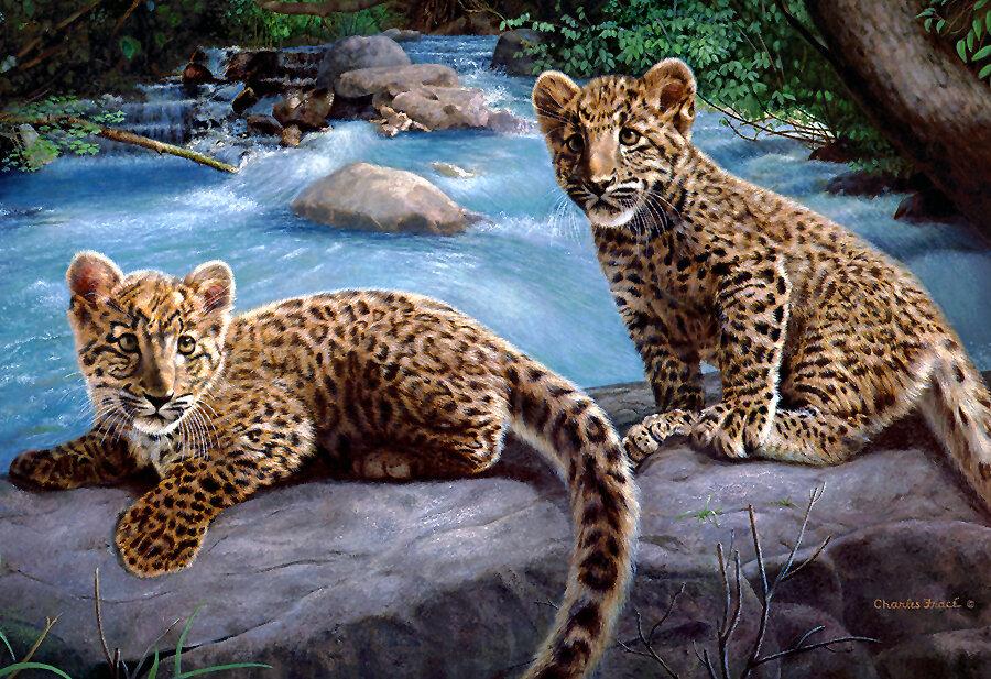 """Схема вышивки  """"маленькие гепарды """" ."""