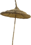 NLD I Sea You Addon Umbrella.png