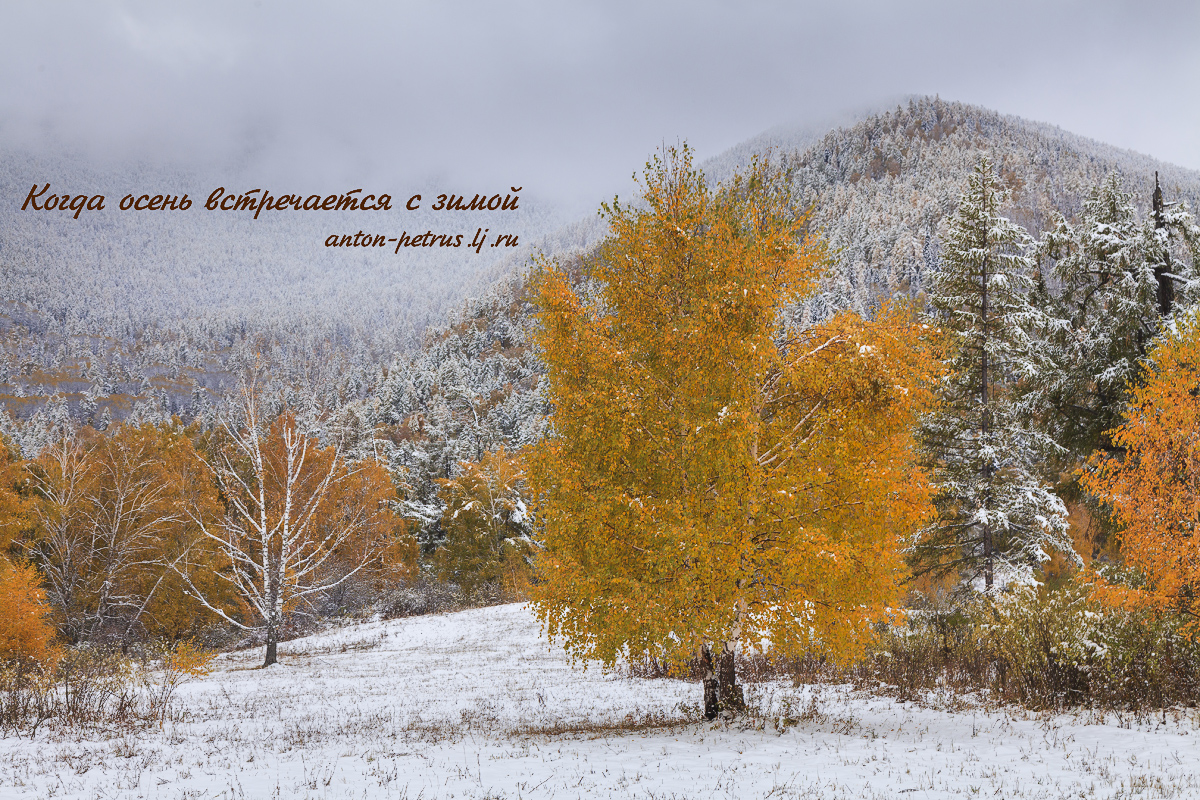 Когда осень встречается с зимой...