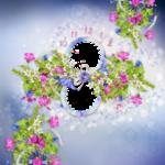 «La_magie_des_fleurs» 0_862c0_dcf80acd_S