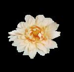 «Mystique_Designs_Flower_Bath» 0_87a16_8b28be63_S