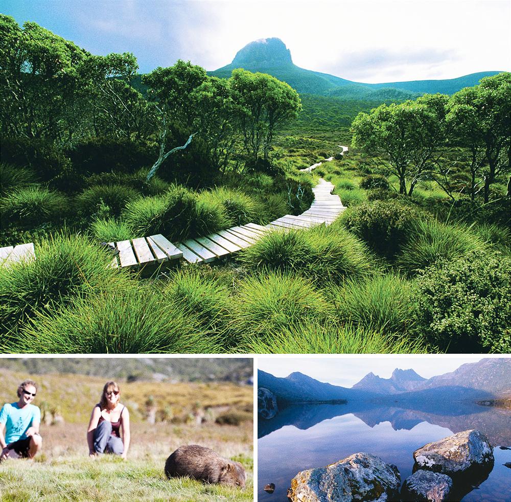 Знаменитый австралийский маршрут проходит покрасивейшим местам Тасмании мимо высоких горных пиков,