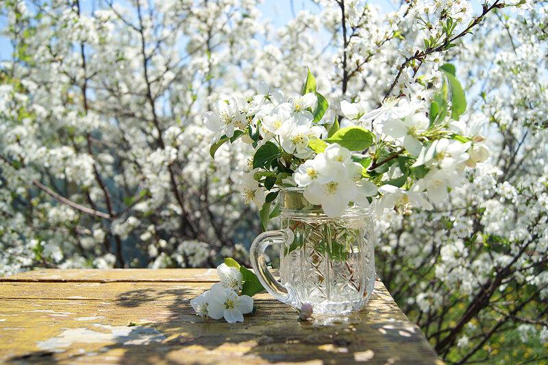 Весна долгожданная !!!