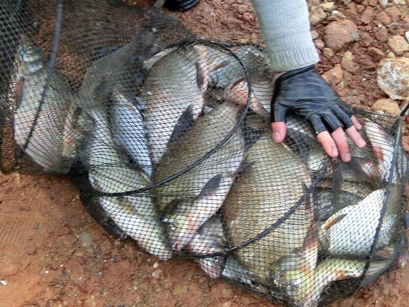 рыбалка в ильинке