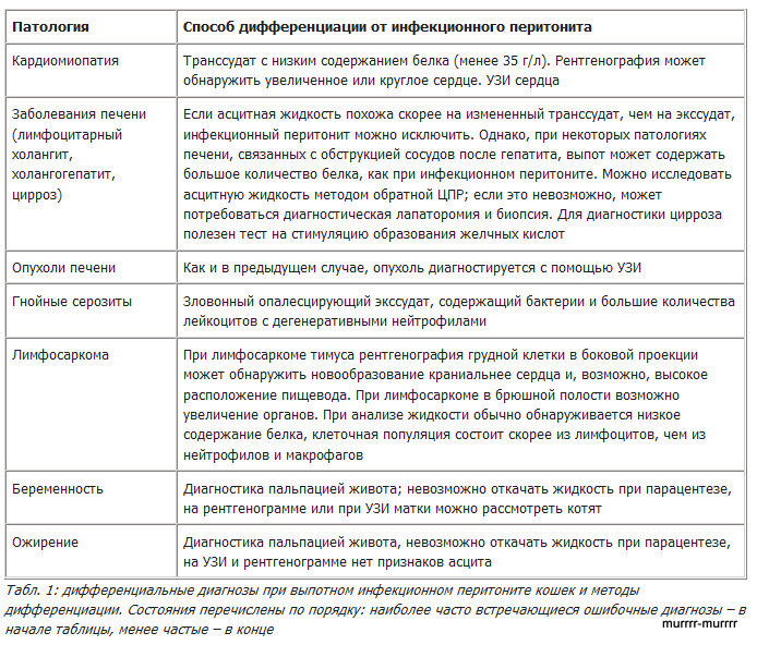 http://img-fotki.yandex.ru/get/6110/69837266.73/0_b6d13_946b98dd_XL.jpg