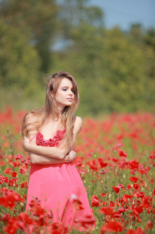 Beautiful Girl in the poppy field, red dress