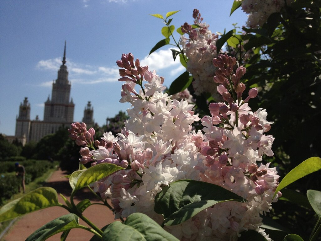 http://img-fotki.yandex.ru/get/6111/105611162.11/0_7b566_ecdc9605_XXL.jpg