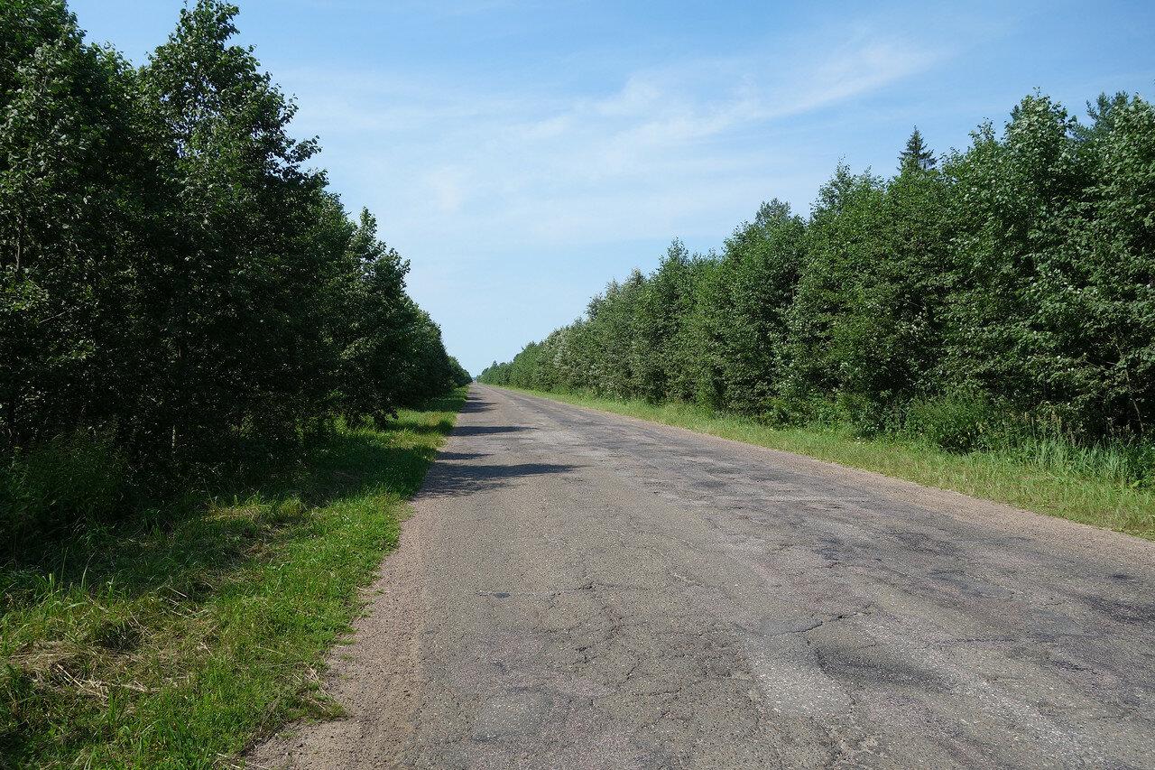 унылое шоссе Скнятино-Нерль