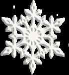 CG_Christmas_Gift_JanaO_element 3.png