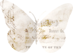 «A butterfly is a flying flower»  0_86b0c_fed68136_S