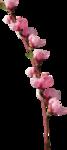 «3 скрап набора.Bee_Avarice,_Luxure,Paresse» 0_88c3a_92716714_S