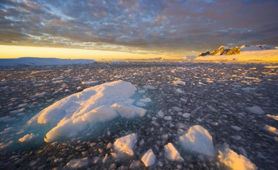 13. Антарктида – пятый по величине континент на планете Площадь Антарктиды составляет 14 миллионов к