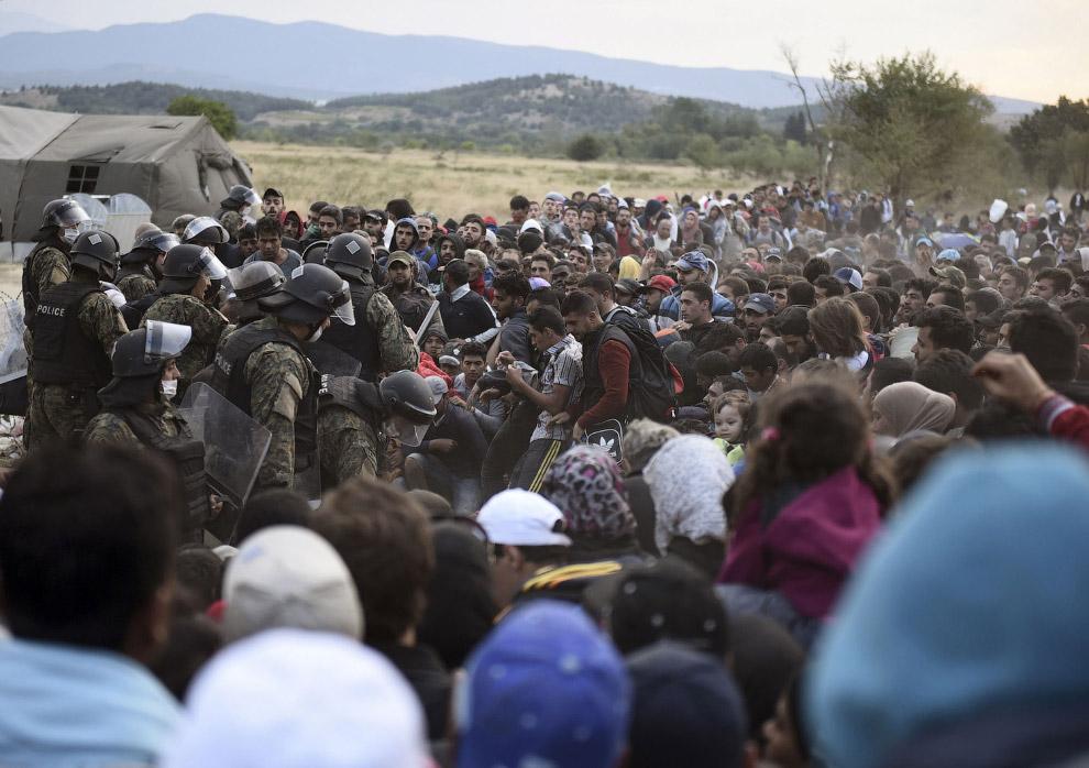 18. Нелегальное пересечение венгерско-сербской границы, 26 августа 2015. (Фото Bela Szandelszky