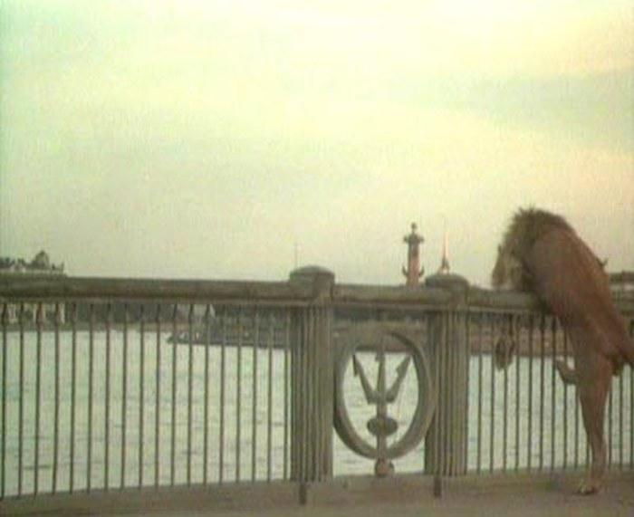69. Лев нагулялся и решил прыгнуть с Биржевого моста. Ведь и лодка так удачно сюда подплывает.