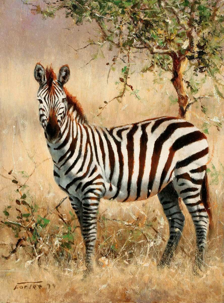 Животные картинки и названия 5