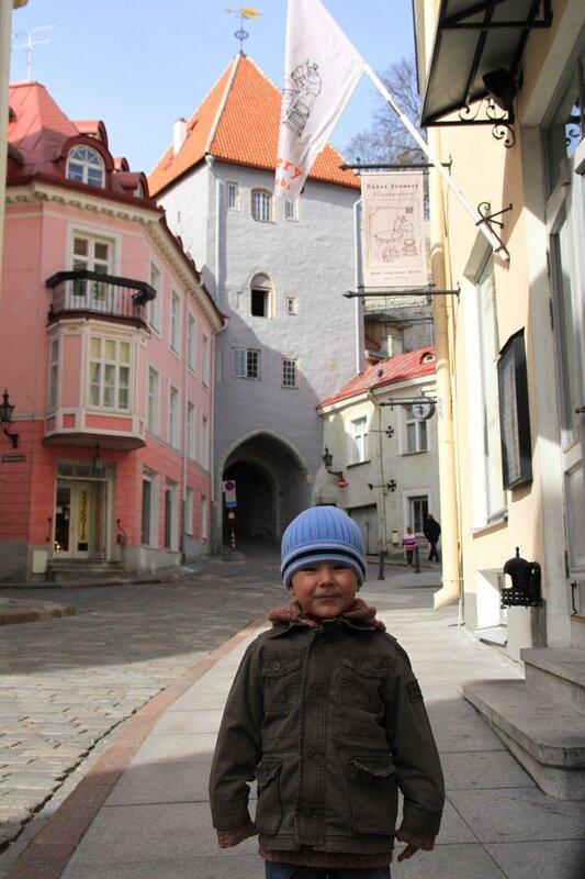 Эстония, Таллинн