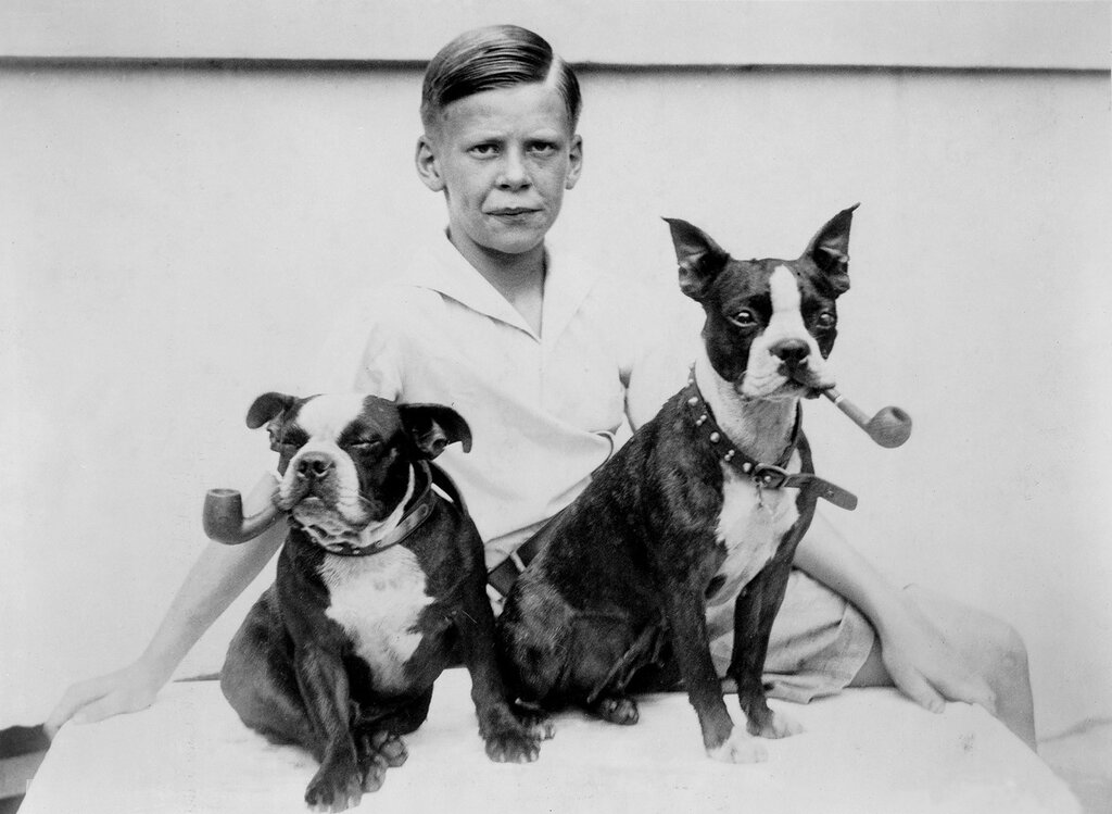 Pipe puffing puppies puzzle proud possessor / photo by Underwood & Underwood. 1933.