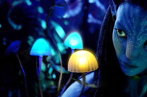аватарка ночь: