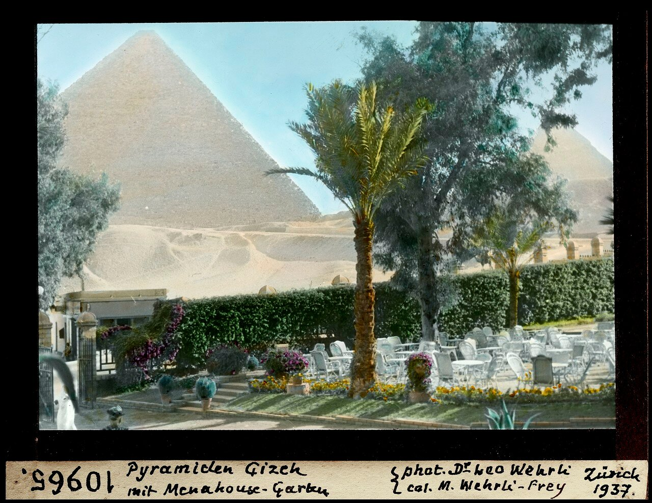Гиза. Пирамида Хеопса и сад отеля Mena House